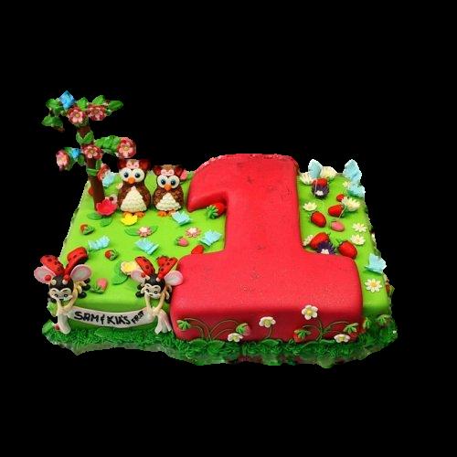 first birthday cake 17 7