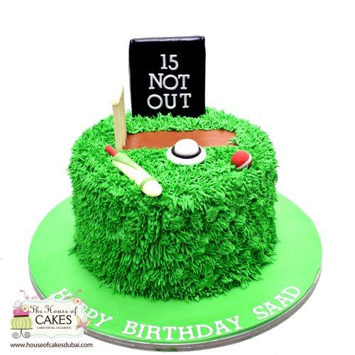 cricket cake 6 7