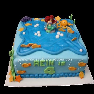 Ariel cake 7