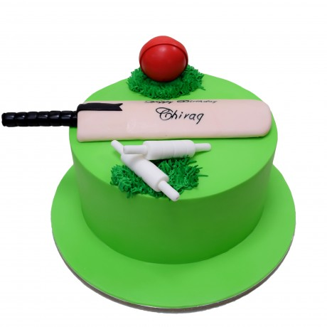 cricket cake 5 7
