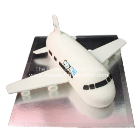 coyne airplane cake 6