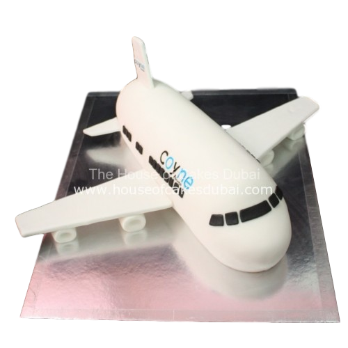 coyne airplane cake 7