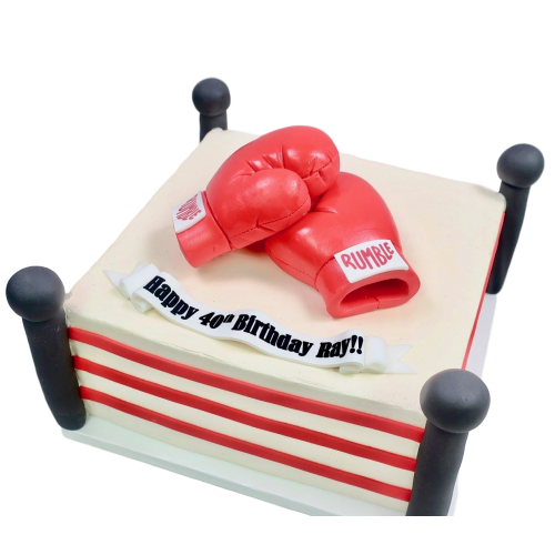 MMA gloves cake