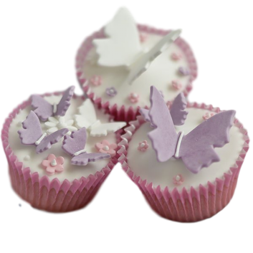 flowers and butterflies cupcakes 3 7