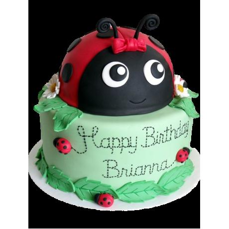 ladybug cake 1 6