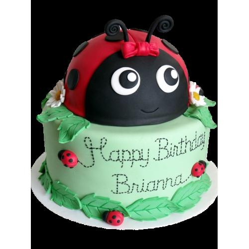ladybug cake 1 7