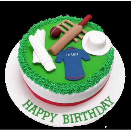 cricket cake 2 6