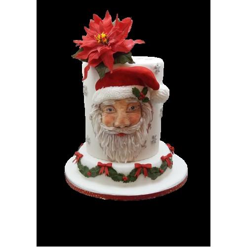 santa claus cake 2 7