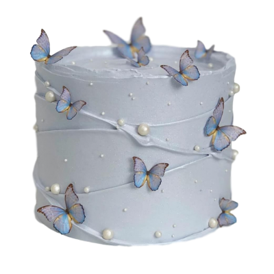 Cake with butterflies 2