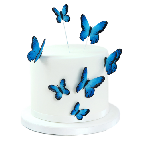 butterfly cake 2 7