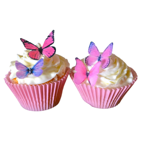 Cupcakes with butterflies