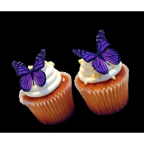 butterflies cupcakes 7