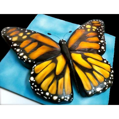 butterfly shape cake 7