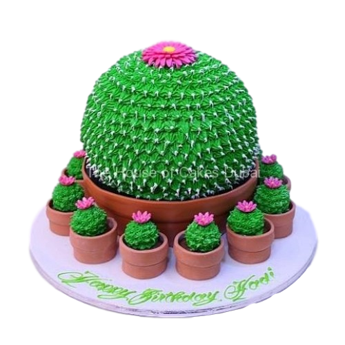 cactus cake and cupcakes 7