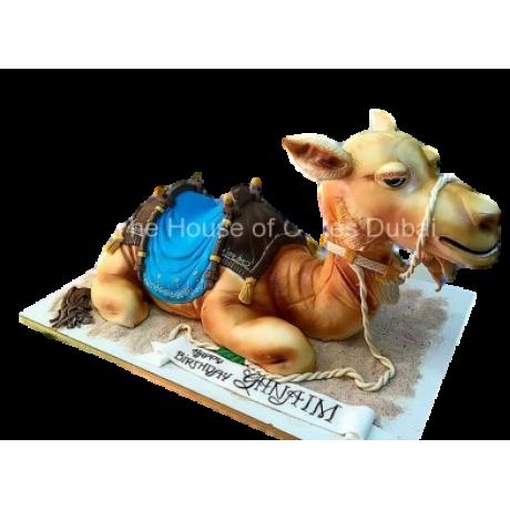 camel cake 4 6