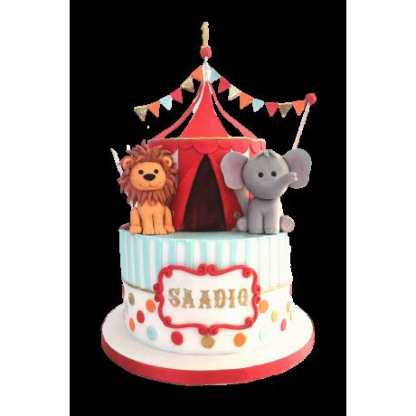 circus cake 2 6