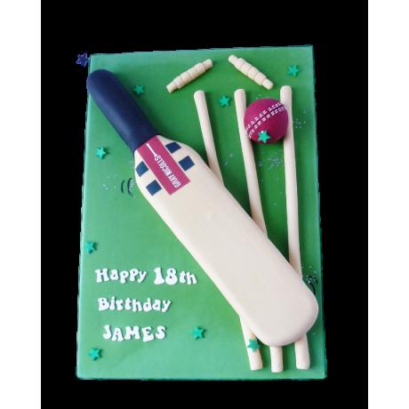 cricket bat cake 6
