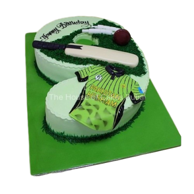 Cricket cake 3