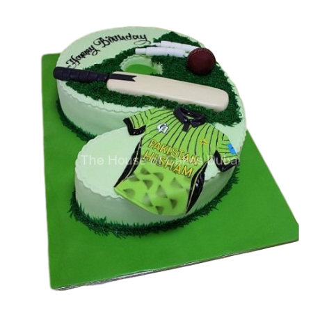 cricket cake 3 12