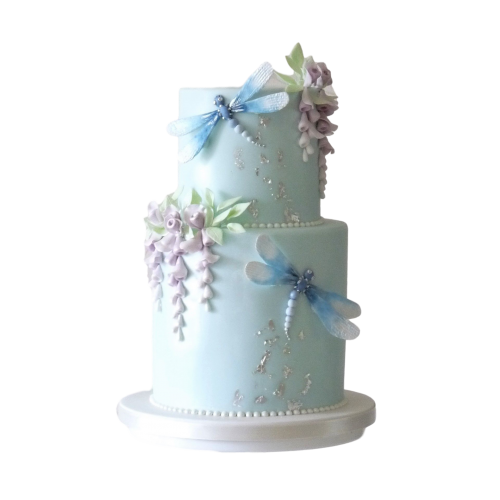 Dragonfly cake 2