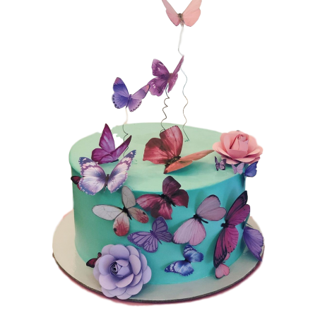 cake with butterflies 3 6