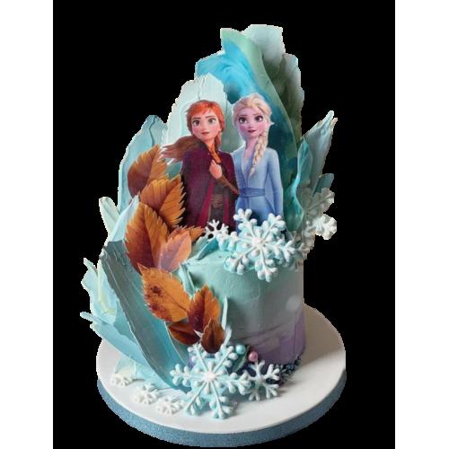frozen cake 6 7