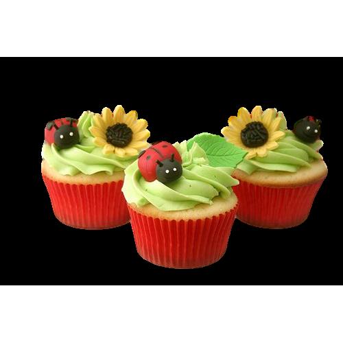 ladybird cupcakes 7