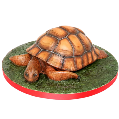 Turtle Cake 4