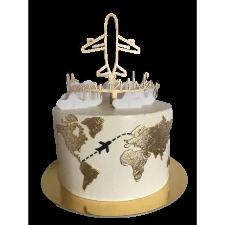 world map cake 6