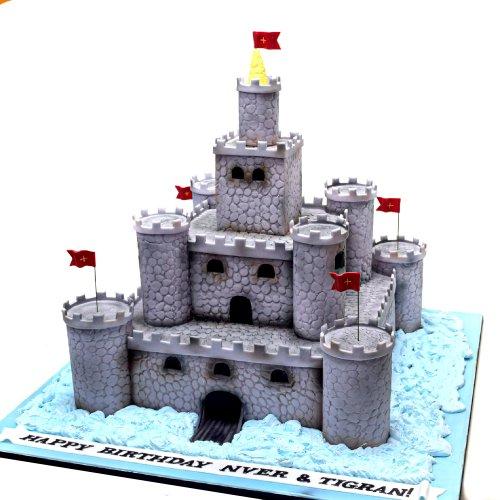 castle fort cake 14