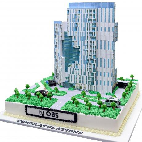 obs building shape cake 12