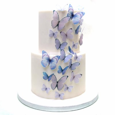 Cake with butterflies 10