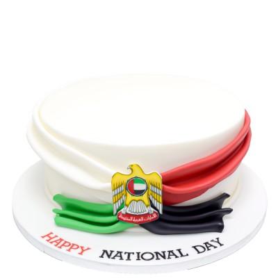 UAE National day cake 7