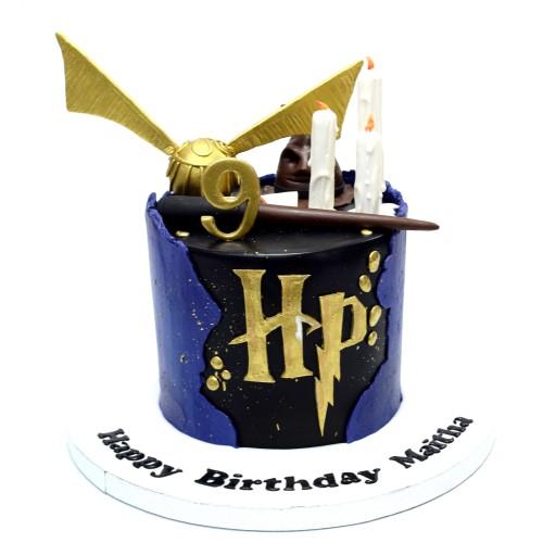 harry potter cake 12 7
