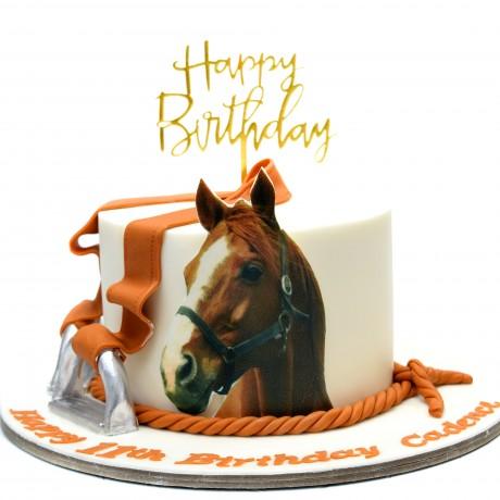 horse cake 3 7