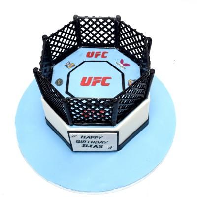 UFC Cake 2