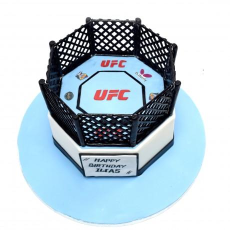 ufc cake 2 6