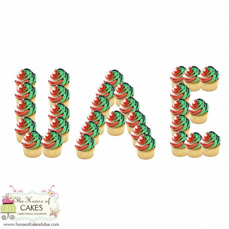 uae national day cupcakes 12