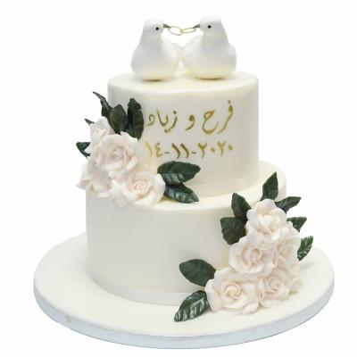 Love birds engagement cake