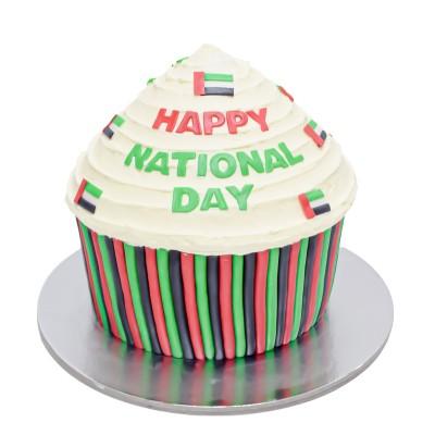 UAE national day cake 12