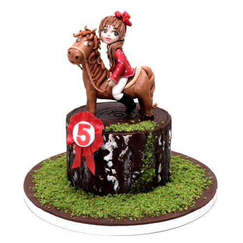 girl and horse cake 2 7