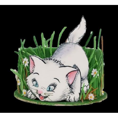 cat cake 7