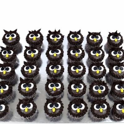 Owl cupcakes 1