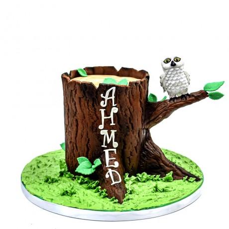 owl cake 11 6
