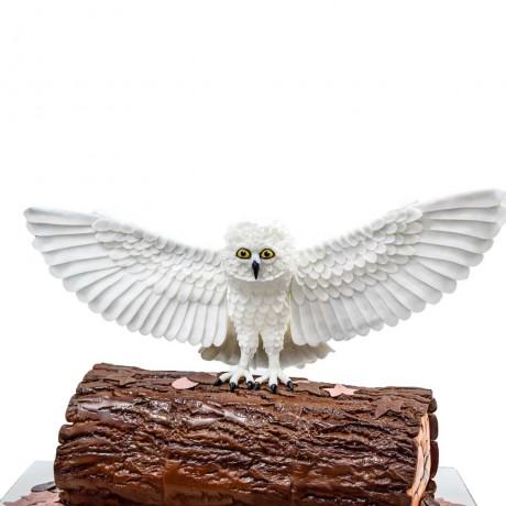 owl cake 12 7