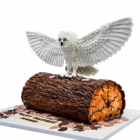 owl cake 12 6