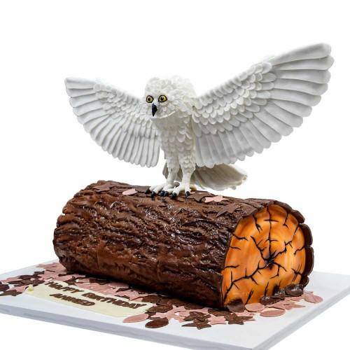 owl cake 12 8