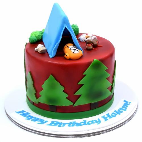 camping tent cake 7