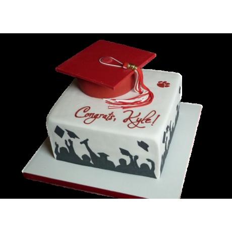 graduation cake 29 6