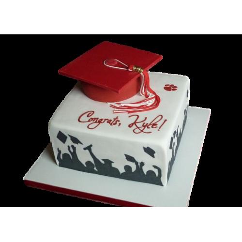 graduation cake 29 7